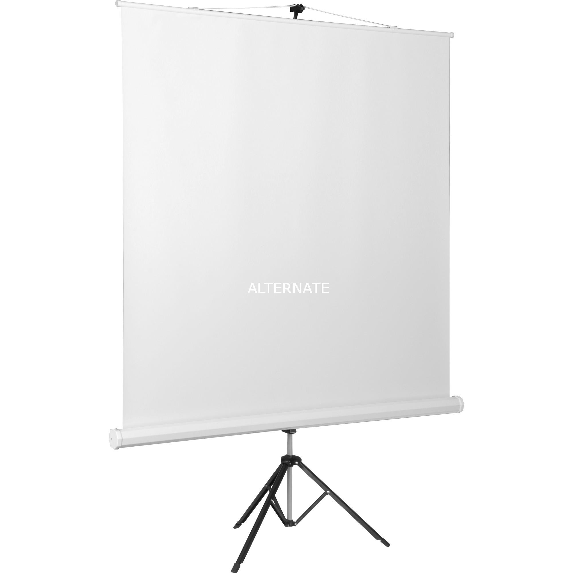 CombiFlex Budget 1:1, Écran de projection statique