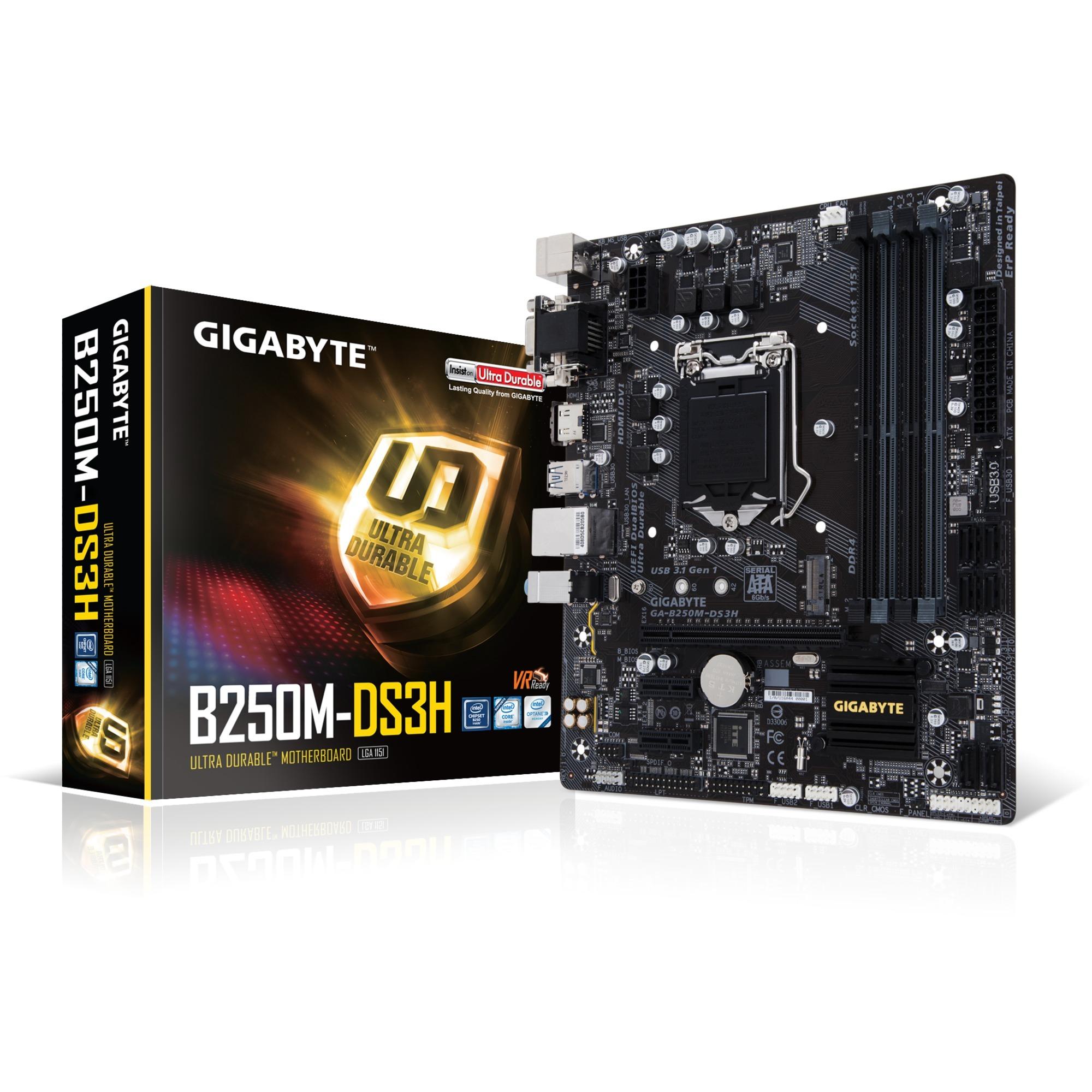 GA-B250M-DS3H Intel B250 LGA 1151 (Socket H4) microATX carte mère