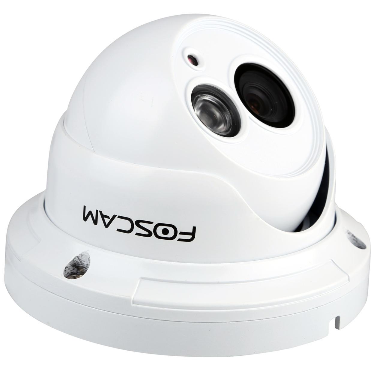 FI9853EP IP security camera Extérieur Dome Blanc caméra de sécurité, Caméra réseau