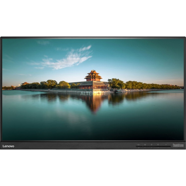 ThinkVision T2364t 23 Full HD IPS Mat Noir Plat écran plat de PC, Moniteur LED